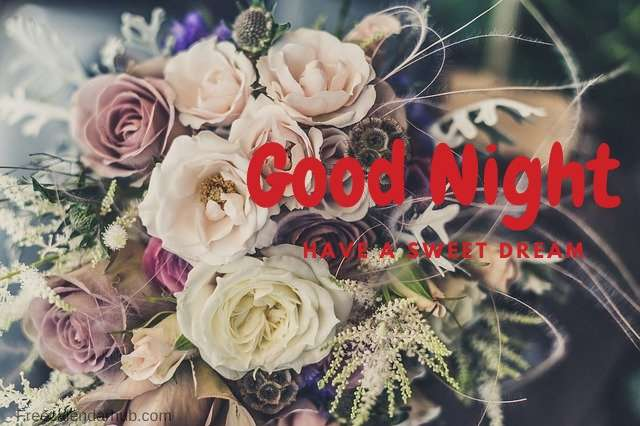 Download Good Night Images For Whatsapp
