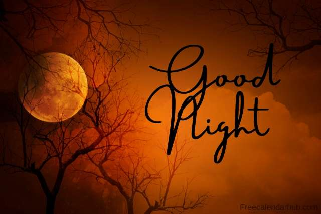 Download Images of Good Night