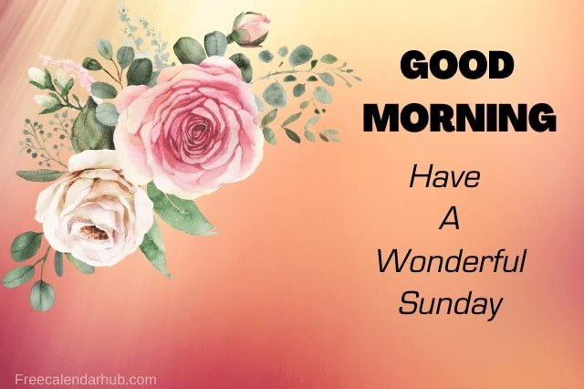 Good Morning Flower Images Morning Wishes