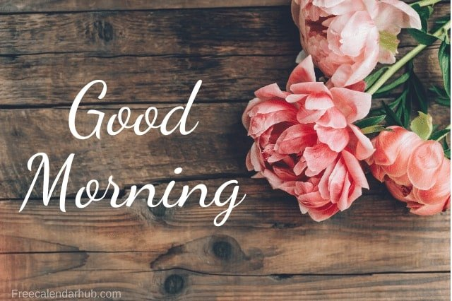 Good Morning Flower Images Painting
