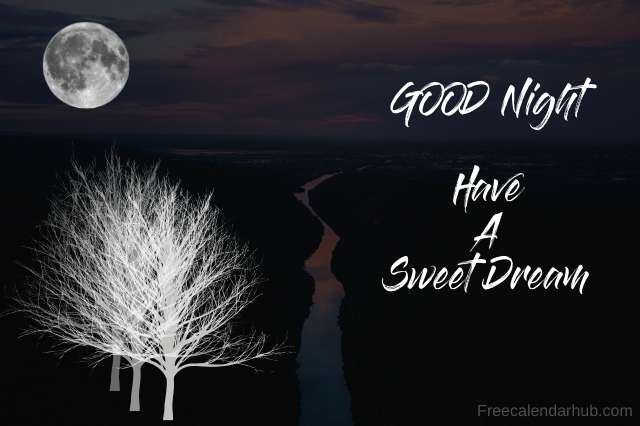 Good Night Sweet Dreams Images Download GIF