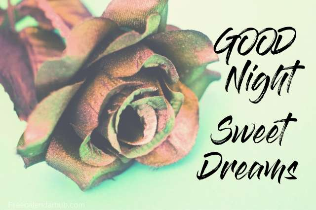 Good Night Sweet Dreams Images Download Love
