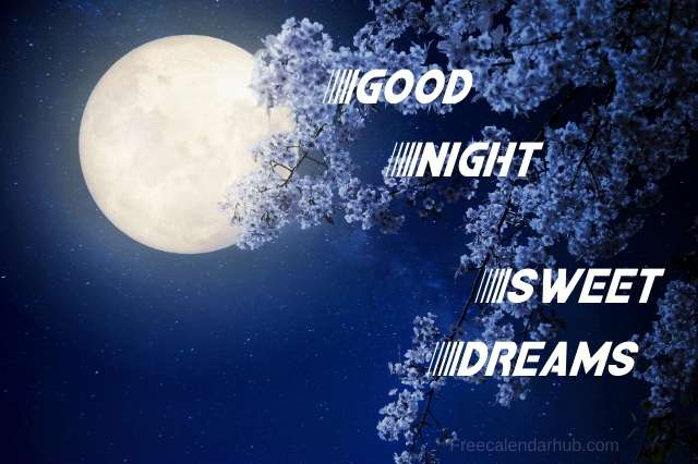 Good Night Sweet Dreams Images Download Photo