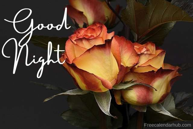 new Good Night Images Free Download